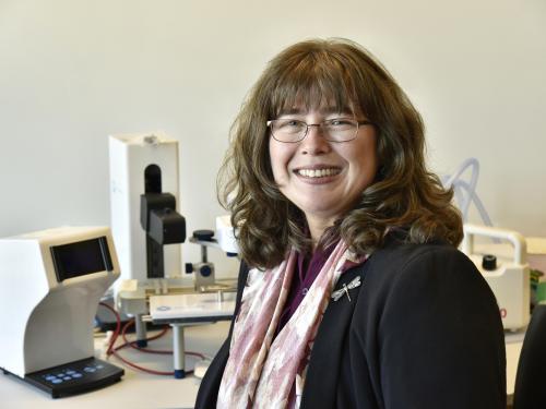Carolina Ilie earned an international honor as a Sigma Xi Fellow