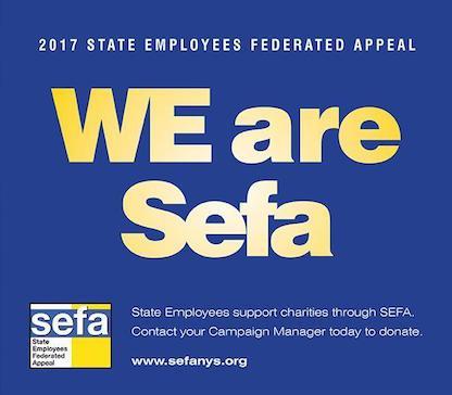 SEFA Campaign Logo 2017