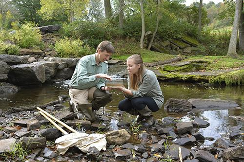 Professor and students analyzing water samples at Rice Creek